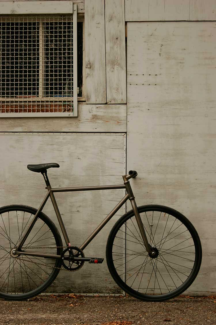 Leaf cycles Speed Nerd Fixie Komplettrad